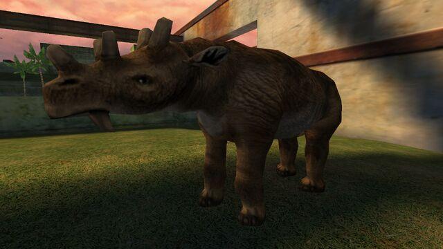 File:Animalia (13).jpg