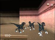 Rage war Raptors