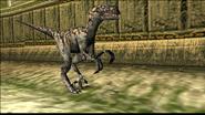Turok 2 Seeds of Evil Enemies - Raptor (11)