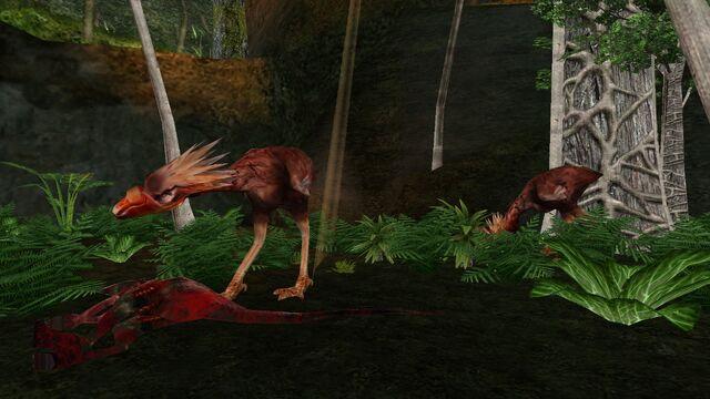 File:Animalia (29).jpg