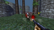 Turok Dinosaur Hunter Weapons - Shotgun (18)