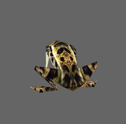 TE Frog01
