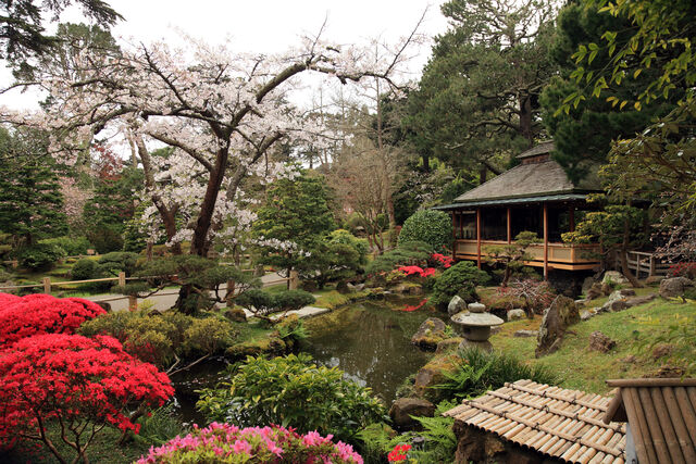 File:Japanese Tea Garden, San Francisco-1-.jpg