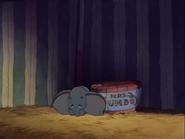 Dumbo 24