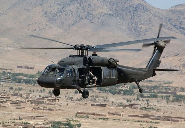 File:Black hawk.jpg