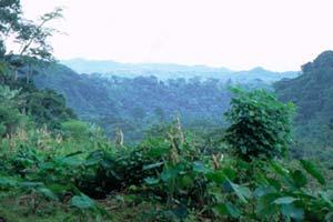 File:Africa Sourcebook.jpg