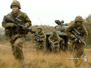 Netherlands infantry