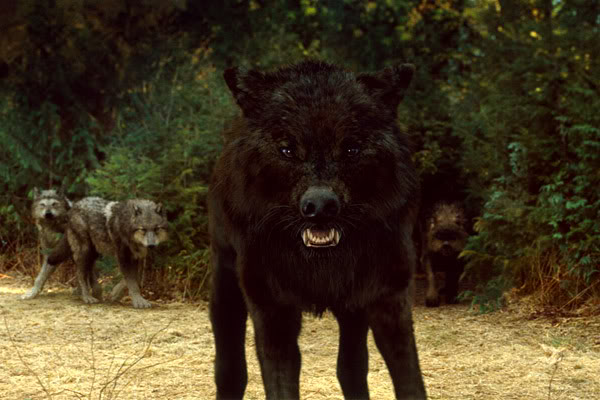 File:New-moon-wolf-pack-3.jpg