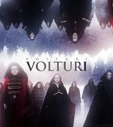 The Volturi Breaking Dawn (2)