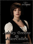 Ashley-alice-graphic