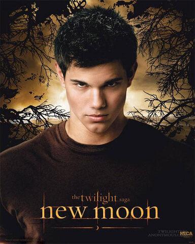 File:New moon taylor lautner poster.jpg
