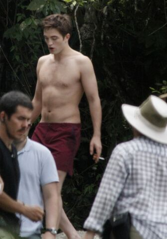 File:PattinsonlifeWaterfall18.jpg