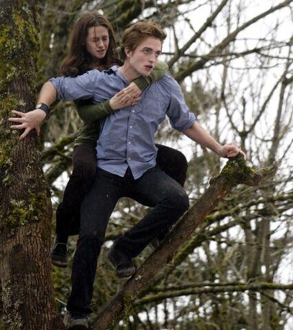 File:Twilight-backlot-21.jpg