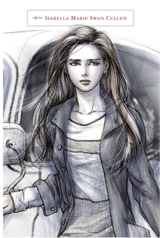 File:The-twilight-saga-the-official-illustrated-guide-bella.jpg