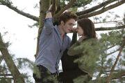 Twilight33