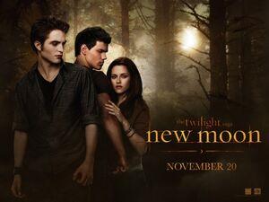Twilight saga new moon ver10