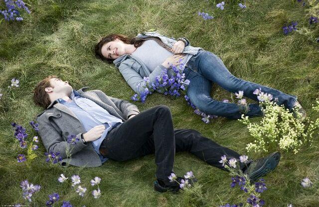 File:Twilight16.jpg