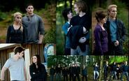 The-Cullen-Family-Eclipse-Wallpaper-Bigger-twilight-series-1 large
