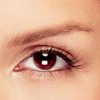 File:Brown eyes.jpg