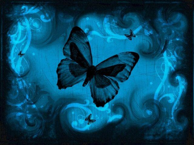 File:Neon-blue-butterfly-love.jpg