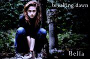 Bella Hunting Breaking Dawn by KristianasCoven