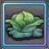 Item-Cabbage