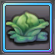 Item-Fresh Cabbage