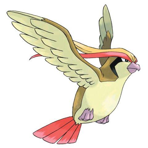 File:Pidgeot.jpg