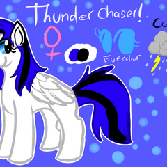 A reference of thunder chaser