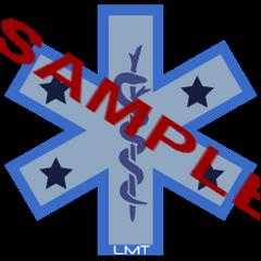 Team Member Badge