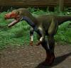 Proceratosaurus directory