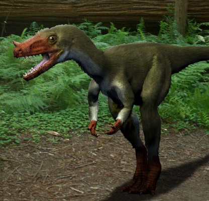 File:Proceratosaurus directory.png