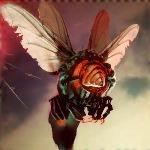Dragonfly lv3