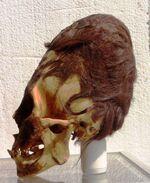 Skull-paracas