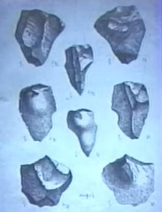 File:20 million year old artifacts.jpg