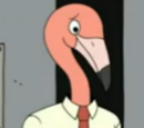 Flamingo people