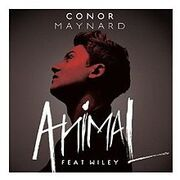 AnimalConorMaynard