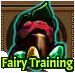 Fairy Training