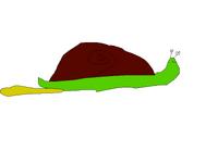 Slugile