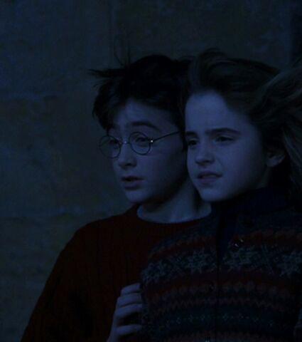 File:Harryhermione4.jpg