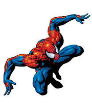 Spide