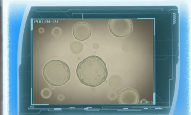 File:Pollen.png