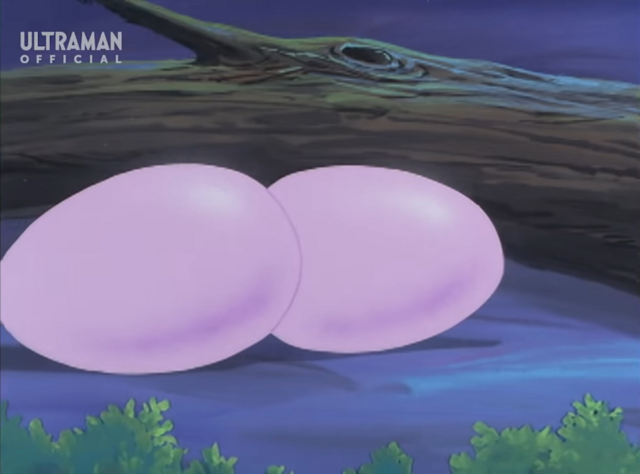 File:Gillacoeggs.png