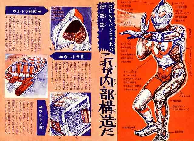 File:Ultraman anatomy.png