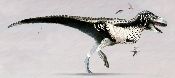 File:How-t-rex-really-looked-like.jpg