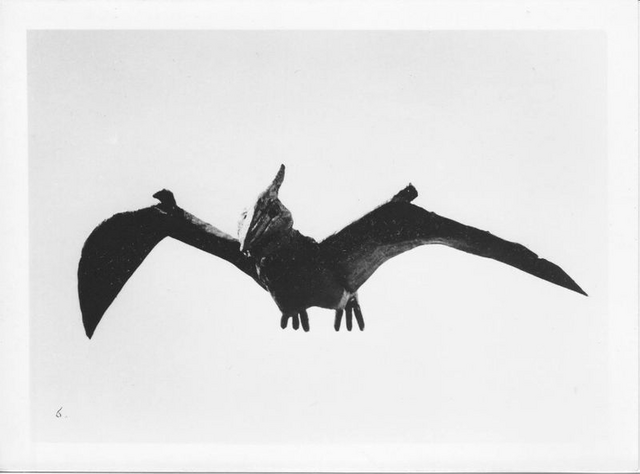 File:Giant Pteranodon 2.png