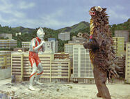 Ultraman vs Gango