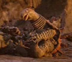 File:Queen tortoise.jpg