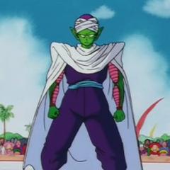 Piccolo in the World Tournament