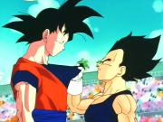 180px-GokuAndVegetaWMATNV